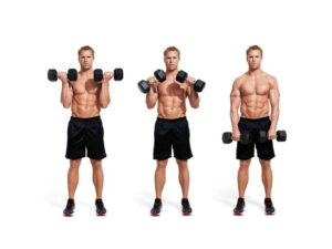 Bicep curls Men Workouts