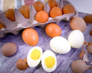 Egg for lose Fat and Gain Muscle