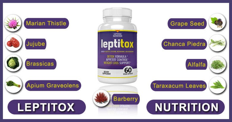 What Are The Ingredients of Leptitox?