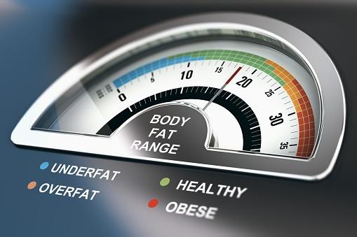 Healthy body fat percentage calculator