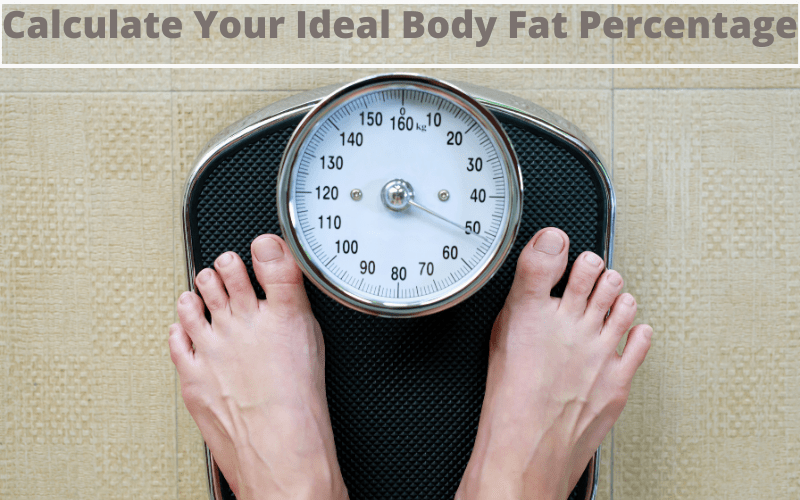 Calculate Your Ideal Body Fat Percentage